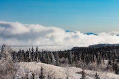 Nebbia spessa che aumenta dal lago Laberge il Yukon Canada fotografie stock libere da diritti