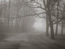 Nebbia spettrale di inverno nel parco Immagine Stock Libera da Diritti
