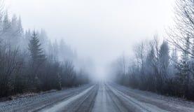 Nebbia spettrale e cattiva visibilità su una strada rurale in foresta immagini stock libere da diritti