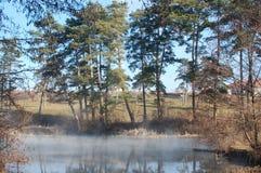 Nebbia su acqua immagini stock