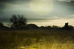 Nebbia su una pianura all'alba Immagine Stock Libera da Diritti