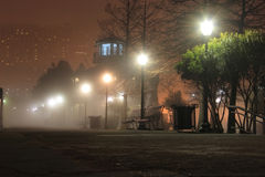 Nebbia sugli argini Fotografia Stock