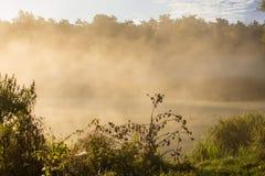 Nebbia sul fiume Fotografia Stock