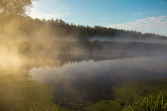 Nebbia sul fiume Immagini Stock