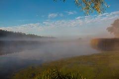 Nebbia sul fiume Fotografie Stock