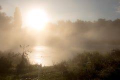Nebbia sul fiume Fotografia Stock Libera da Diritti