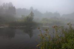 Nebbia sul ` ha di CherÑ del fiume Immagini Stock Libere da Diritti
