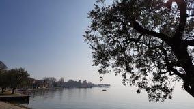 Nebbia sul lago Immagine Stock