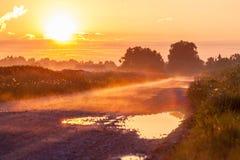 Nebbia sul primo mattino Fotografia Stock Libera da Diritti