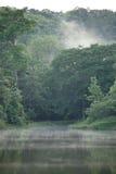 Nebbia sulla superficie in Saraburi fotografia stock