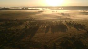 Nebbia in villaggio russo stock footage