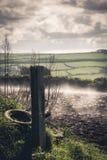 Nebel über dem Feld Stockbilder