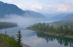Nebel über dem Fluss lizenzfreies stockbild