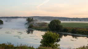 Nebel über dem Fluss und dem Feld Stockbild