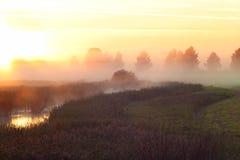 Nebel über dem kleinen Fluss morgens Stockbilder