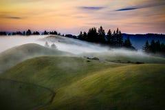 Nebel über dem Rollen von grünen Hügeln bei Sonnenuntergang stockbild