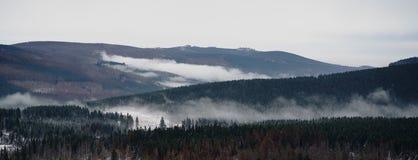 Nebel über dem Wald im Spätherbst lizenzfreies stockfoto