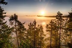 Nebel über einer Wasserwiese Lizenzfreies Stockbild