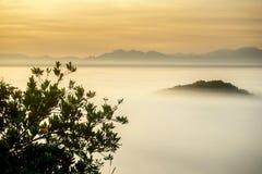 Nebel über einer Wasserwiese Lizenzfreie Stockfotos