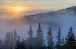 Nebel über Gebirgszug im Sonnenaufganglicht Stockfotografie