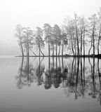 Nebel über See Lizenzfreies Stockfoto