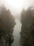 Nebel über Waldfluß. Stockfotos