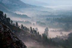 nebel stockbild