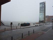 Nebel Стоковое Фото