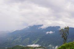 Nebel-Ansicht Thailand Phu Thap Boek Lizenzfreie Stockfotografie