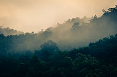 Nebel auf dem Berg Lizenzfreies Stockbild