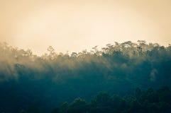 Nebel auf dem Berg Stockbild
