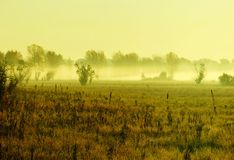 Nebel auf dem Fluss Stockfotos