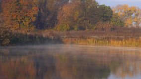 Nebel auf dem Morgensee stock video footage