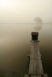 Nebel auf dem See Stockbilder