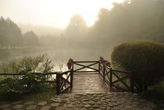 Nebel auf dem See Stockbild
