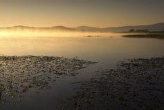 Nebel auf dem See am Sonnenaufgang Stockfotografie