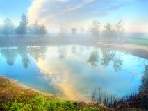 Nebel auf dem Teich Stockbilder