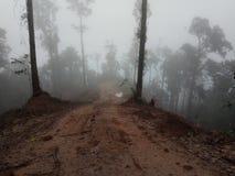 Nebel auf den Steigungen der Berge 2 Stockfoto