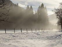 Nebel auf der Straße Stockbilder