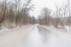 Nebel auf der Stra?e st?rmischer Winter-in den ung?nstigen Wetterbedingungen stockbilder