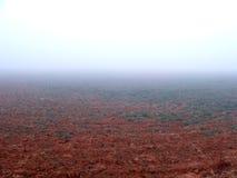 Nebel auf Feld Lizenzfreies Stockbild