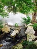 Nebel auf grünen Sträuchen und Bäumen im Garten Stockfotografie