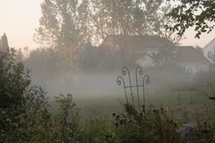 Nebel in Autumn Morning Lizenzfreies Stockfoto