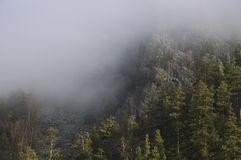 Nebel. Bashkortostan. SüdUrals Stockfotos