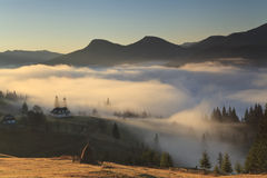 Nebel bei Sonnenaufgang Stockfoto