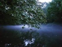 Nebel, der über Fluss vereinbart Stockbilder