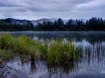 Nebel, der auf See in den Alaska-Vereinigten Staaten von Amerika liegt Stockbilder
