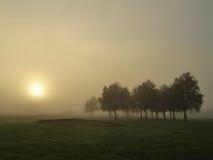Nebel an der Dämmerung lizenzfreie stockfotos