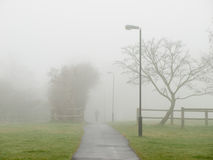 Nebel, der eine Straße in einem Park abdeckt Lizenzfreie Stockbilder