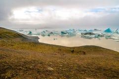 Nebel der Eisberge morgens, Island stockfotografie